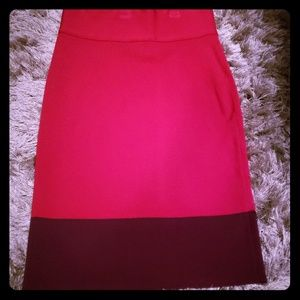 Express Small Fitted Pencil Skirt